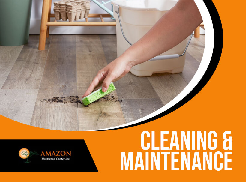 Cleaning and Maintenance