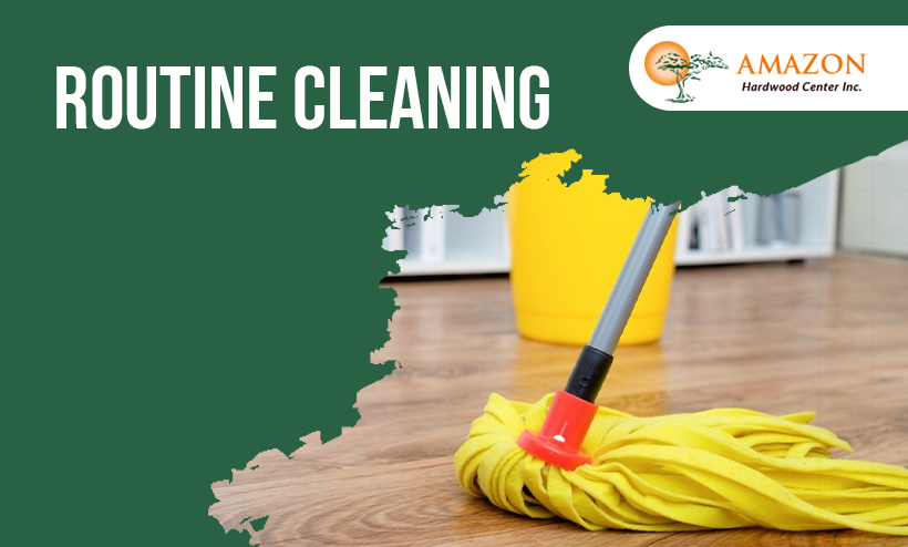 Routine-Cleaning